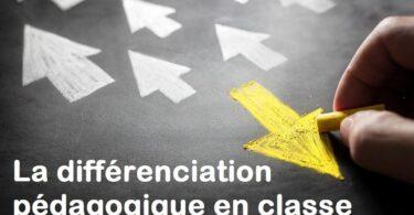 différenciation pédagogique