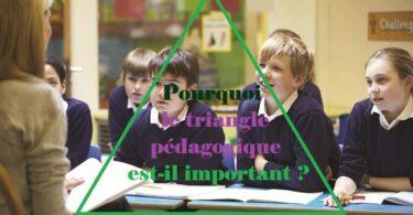 Pourquoi le triangle pédagogique