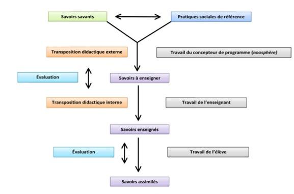 étapes de la transposition didactique